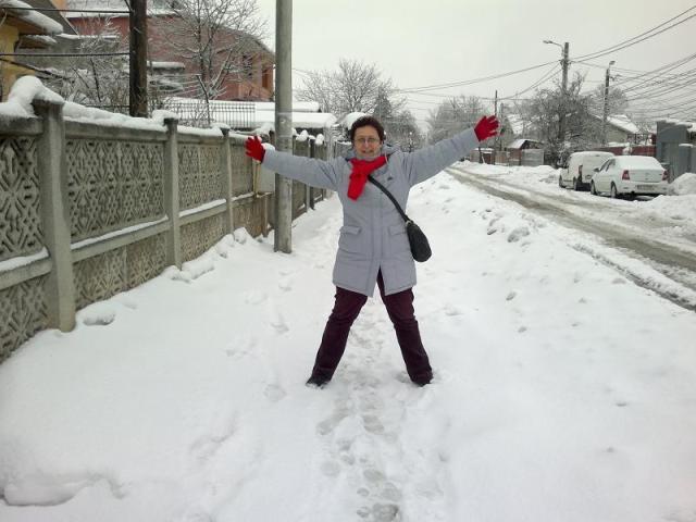 iarna grea 2012